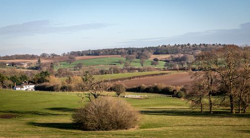 fields7