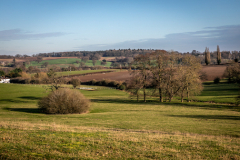 fields5